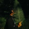 sypck (@sypck) Avatar