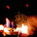 Greypolitic (@greypolitic) Avatar