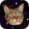 Galactic mice (@galacticmice) Avatar