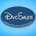 DVC Sales (@dvcsales) Avatar