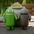 Android (@androidsolution) Avatar