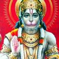 PurvaBha (@purvabhatt) Avatar