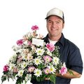 Flower delivery Cape Town South Africa (@dealzonlineco) Avatar