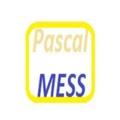 Pascal  (@pascalmess) Avatar