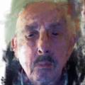 Dirk Peleman (@kweepeer) Avatar