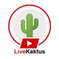 Live Kaktus (@livekaktus) Avatar