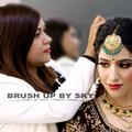 Shweta Singh | Professional Makeup Artist (@brushupbysky) Avatar