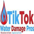 Tik Tok Water Damage Pros (@tiktokwaterdamagepros) Avatar