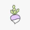 turnip (@turnipco) Avatar