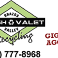 BV Trash Valet & Recycling (@bvtrashvalet) Avatar