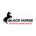 BLACK HORSE SECURITY  (@blackhorsesecurity) Avatar