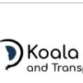 Koala Tours and Transportation (@koalatoursandtransportation) Avatar