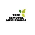 Tree Removal Mississauga (@treeremoval) Avatar