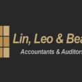 LLB Accountants (@leolinb) Avatar