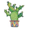 Cosas De Cactus (@ellocosasdecactus) Avatar