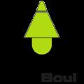 Pro Soul Studios (@prosoulstudios) Avatar