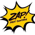 Zap Pest Control Inc (@zappestcontrolinc) Avatar