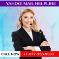 Yahoo mail Helpline number +1-877-336-9533 (@ysupport) Avatar