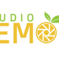 Lemon Studio (@studiolemon) Avatar