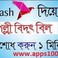 bkash app (@bkashapp) Avatar