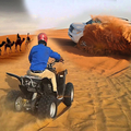Desert Safari Dubai (@azibro) Avatar