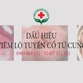 Viem Lo Tuyen Co Tu Cung (@viemlotuyencotucung152) Avatar