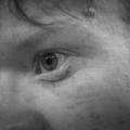 Everett Stein (@just_a_ginger_person) Avatar