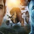 movieninja (@movieninjaonline) Avatar