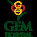 Gem Hospital - Laparoscopic Surgery Hospi (@gemhospital) Avatar