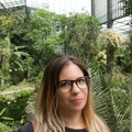 Silvia Rodrigues  (@silviarodrigues) Avatar