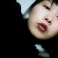 Hsin-Hua L (@pulvises) Avatar