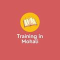traininginmohali (@traininginmohali) Avatar