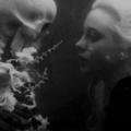 Prudence XII (@belladonnamalefactor) Avatar
