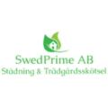 Swed Prime  (@swedprimeab) Avatar