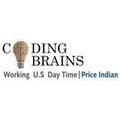Coding Brains (@codingbrains) Avatar