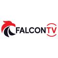 FalconT (@falcontviptv) Avatar