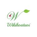 Wiki (@wikihoatuoi) Avatar