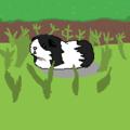 Kitty-Cat (@kitty-cat-cat) Avatar