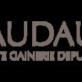 vaudaux (@vaudaux) Avatar