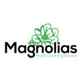 Magnolias Maids (@magnoliasmaids) Avatar