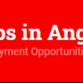Emprego Em Angola (@empregoemangol) Avatar