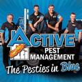 Active est (@activepest) Avatar