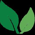 Green Wel (@greenwellnesslife) Avatar