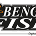 Bengal Fish (@bengalfish) Avatar