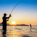 fishing on Marco Island (@marcoislandfishingcompany) Avatar