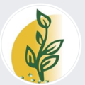 Biocarve Seeds (@biocarve) Avatar