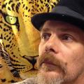 leopard (@leopardo) Avatar