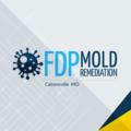 FDP Mold Remediation (@benjaminferdinand) Avatar
