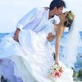 Wedding Tropics (@weddingtropics) Avatar