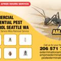 Ants Exterminators (@antsexterminators111) Avatar